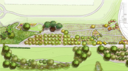 Graphic of a Food Forest