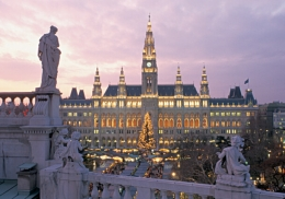 Vienna's Rathaus building at dusk